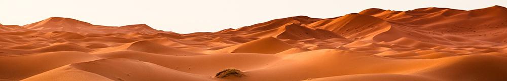 ספר במדבר|