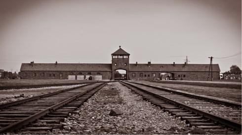 השואה בהסתכלות כללית