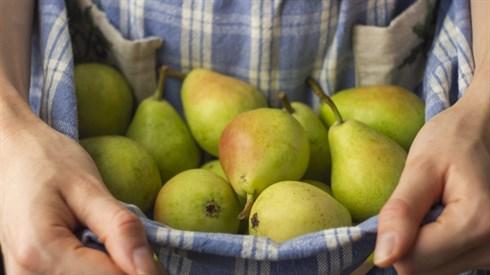 פירות שאין עליהם קדושת שביעית
